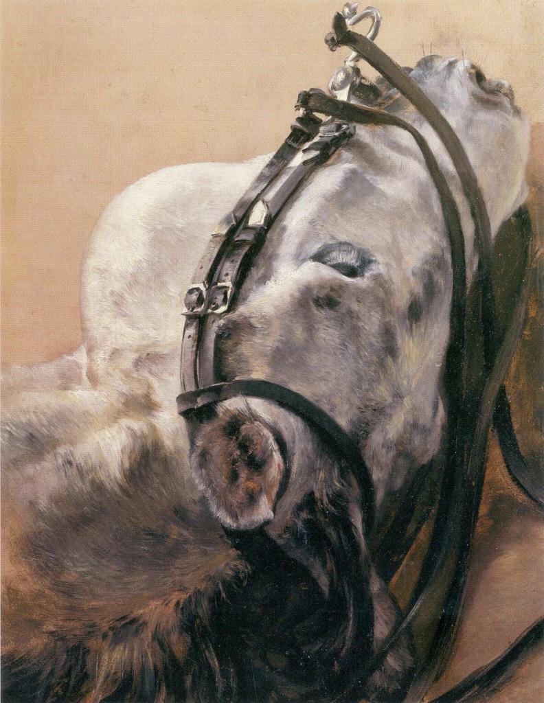 Studium głowy konia