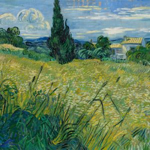 Vincent van Gogh Vincent van Gogh - Green Field | 1889, National Gallery in Prague